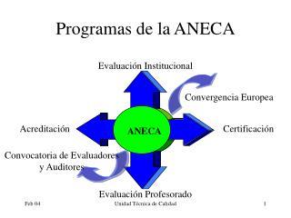 Programas de la ANECA