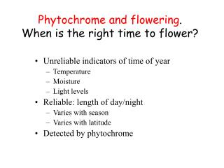 Phytochrome and flowering . When is the right time to flower?