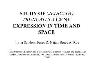STUDY OF  MEDICAGO TRUNCATULA  GENE EXPRESSION IN TIME AND SPACE