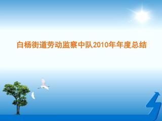 白杨街道劳动监察中队 2010 年年度总结