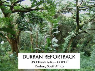 DURBAN REPORTBACK UN Climate talks – COP17  Durban, South Africa