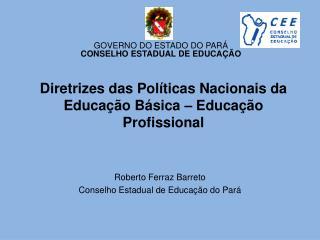 Diretrizes das Políticas Nacionais da Educação Básica – Educação Profissional