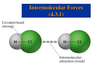 Intermolecular Forces (4.3.1)