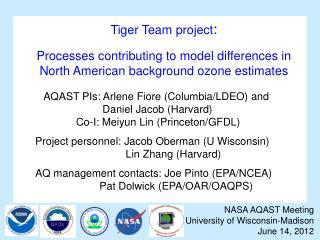 Tiger Team project :