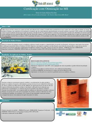 Certificação com Otimização no MS Deize  de Lima  S alazar Escobar