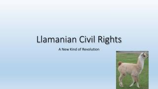 Llamanian  Civil Rights