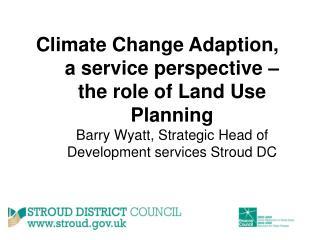 Adaptation or Mitigation