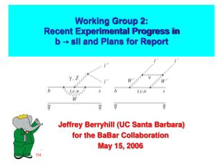 Working Group 2: Recent Experimental Progress in b  →  sll and Plans for Report