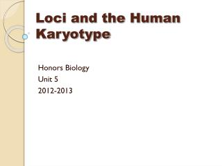 Loci and the Human Karyotype