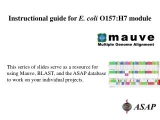 Instructional guide for  E. coli  O157:H7 module