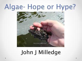 Algae- Hope or Hype?