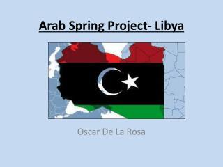 Arab Spring Project- Libya