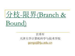 分枝-限界 (Branch & Bound)