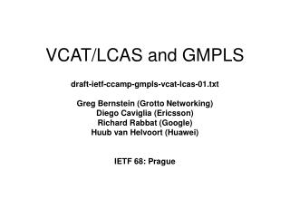 VCAT/LCAS and GMPLS