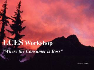 """LCES  Workshop """" Where the Consumer is Boss """""""