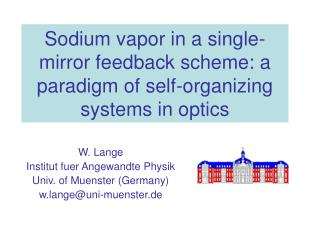 Sodium vapor in a single-mirror feedback scheme: a paradigm of self-organizing systems in optics