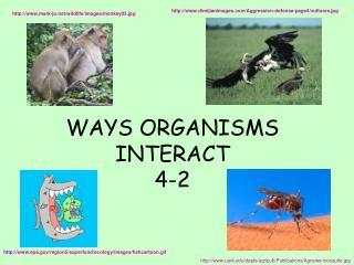 WAYS ORGANISMS INTERACT 4-2