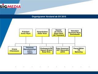 Organigramm Vorstand ab GV 2010