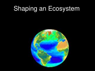 Shaping an Ecosystem