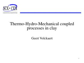 Thermo-Hydro-Mechanical coupled processes in clay