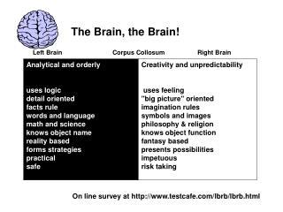Left Brain   Corpus Collosum    Right Brain