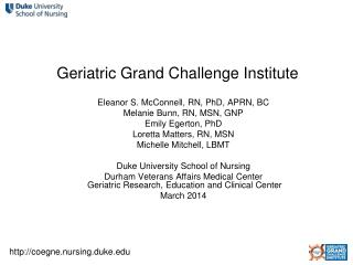 Geriatric Grand Challenge Institute