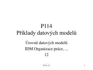 P114 Příklady datových modelů