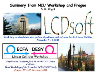 Summary from NIU Workshop and Prague S. R. Magill