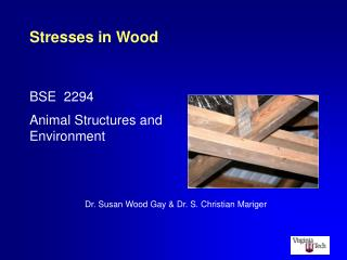 Stresses in Wood