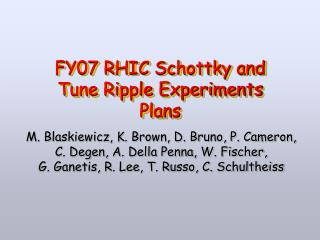 FY07 RHIC Schottky and Tune Ripple Experiments Plans