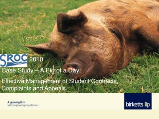 2010   Case Study � A Pig of a Day