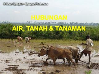 HUBUNGAN  AIR, TANAH & TANAMAN