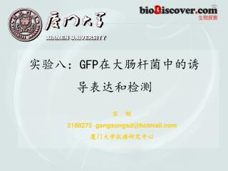 实验八: GFP 在大肠杆菌中的诱导表达和检测