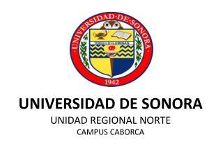 UNIVERSIDAD DE SONORA UNIDAD REGIONAL NORTE CAMPUS CABORCA