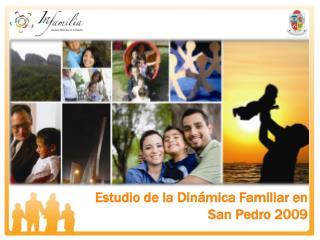 Estudio de la Din mica Familiar en  San Pedro 2009