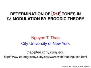 DETERMINATION OF IDLE TONES IN  SD  MODULATION BY ERGODIC THEORY