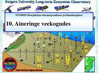 YFO0010 Sissejuhatus okeanograafiasse ja limnoloogiasse 10.  Aineringe veekogudes