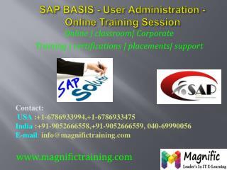 sap basis online training in mumbai