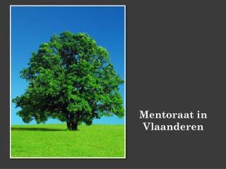 Mentoraat in Vlaanderen