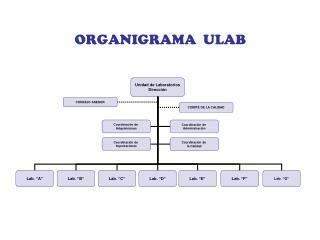 ORGANIGRAMA  ULAB