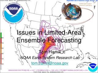 Issues in Limited-Area  Ensemble Forecasting