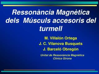 M. Villal n Ortega J. C. Vilanova Busquets J. Barcel  Obreg n