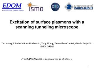 Excitation of surface plasmons with a scanning tunneling microscope