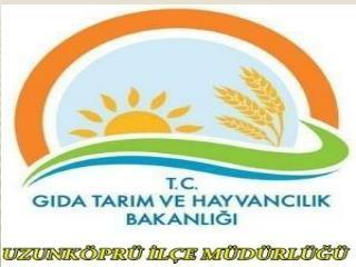 T.C. UZUNKÖPRÜ  KAYMAKAMLIĞI   Gıda Tarım ve Hayvancılık UZUNKÖPRÜ İlçe Müdürlüğü