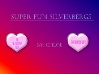 Super Fun  Silverbergs
