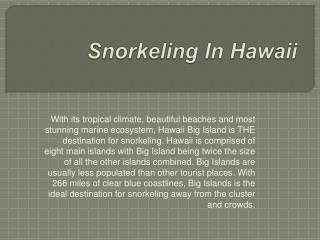 best snorkeling in hawaii big island