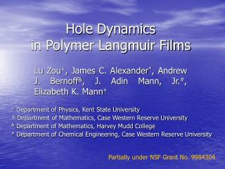 Hole Dynamics  in Polymer Langmuir Films