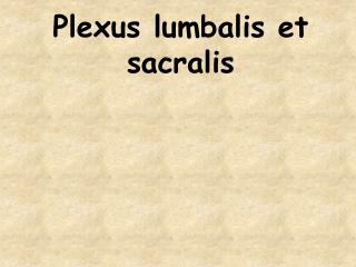Plexus lumbalis et sacralis