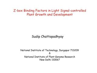 Z-box Binding Factors in Light Signal-controlled  Plant Growth and Development