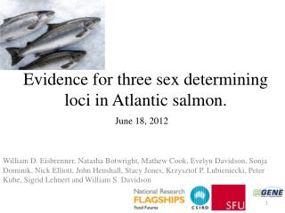 Evidence for three sex determining loci in Atlantic salmon.